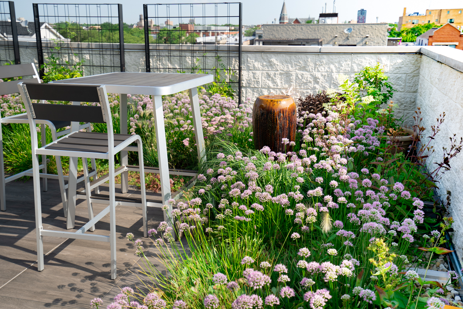 Chicago Roof Garden by Ecogardens-2.jpg
