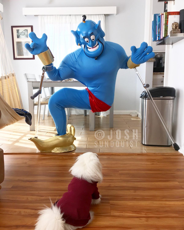 Genie and Dog.JPG