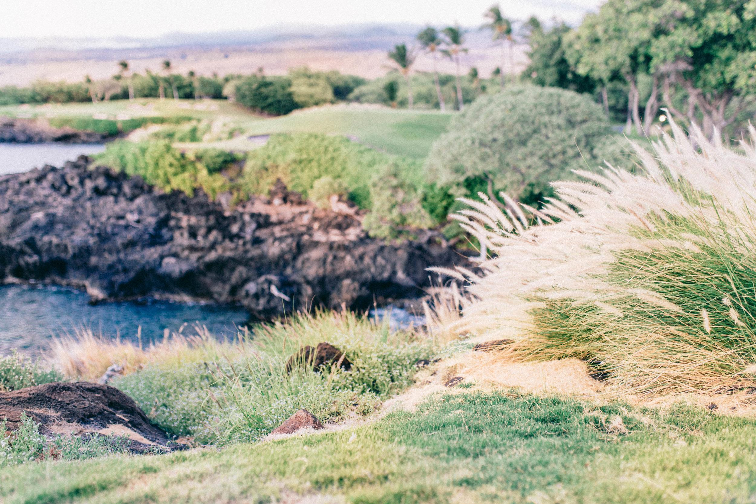 MaunaKea_Sept2016-8-2.jpg
