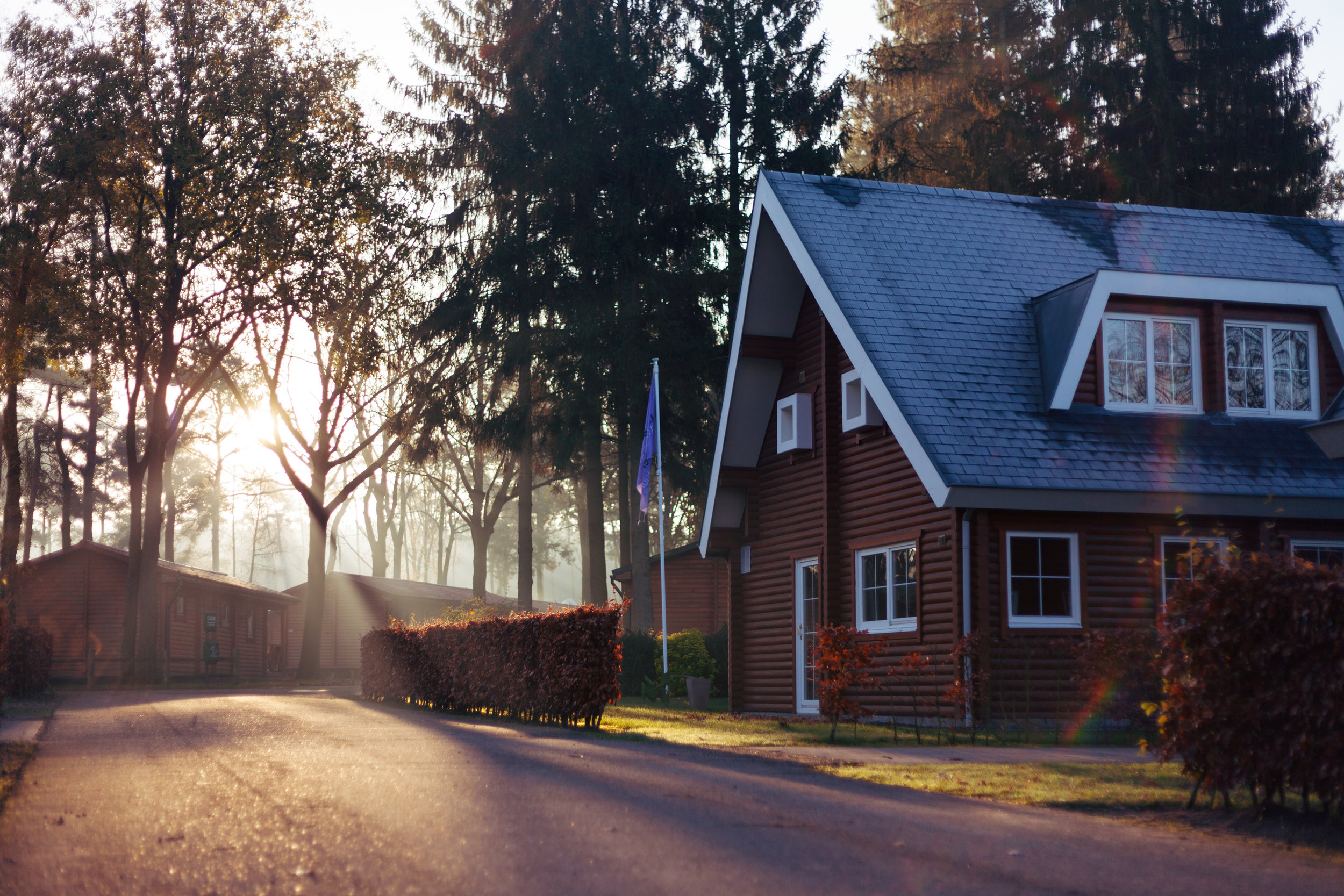 A rental house with a large driveway that leads around a bend where trees stand with light pouring through them.   If you are renting out an additional rental property, you should consider ALL your insurance options.