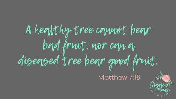 A healthy tree cannot bear bad fruit, nor can a diseased tree bear good fruit Matthew 7_18.jpg