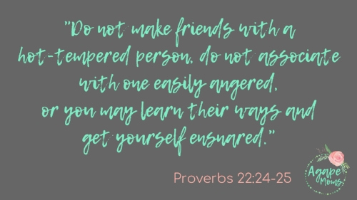 Do not make friends with a hot-tempered person, do not associate with one easily angered, or you may learn their ways and get yourself ensnared.jpg