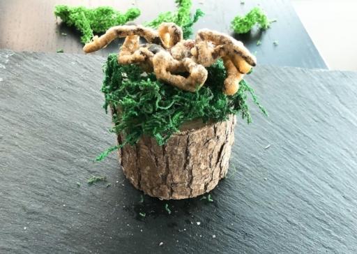 Tempura-fried tarantula