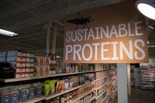 Edible crickets – in a variety of flavors – are on display at MOM's Organic Market in Rockville, Maryland.  (Photo: Jasper Colt)