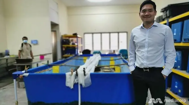 Former lawyer Kevin Wu decided to open a cricket farm because he believes in healthier and more sustainable food options. (Photo: Amir Yusof) Read more at https://www.channelnewsasia.com/news/asia/malaysia-crickets-lawyer-insect-farmer-healthy-sustainable-11748254