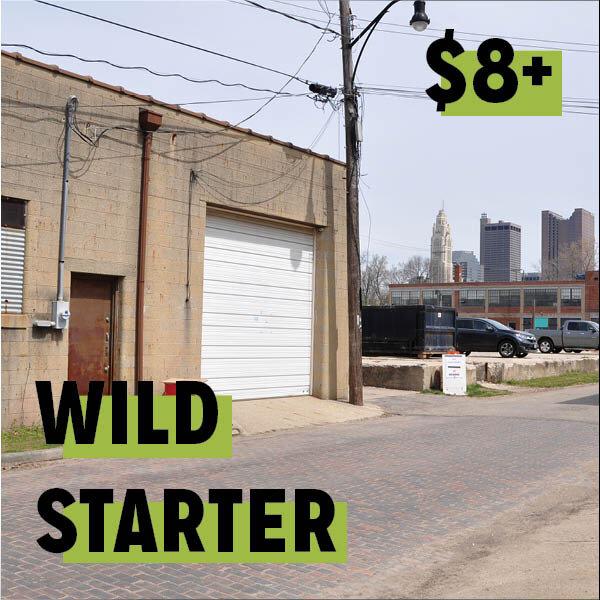 Kickstarterrewardimageswebsite2.jpg
