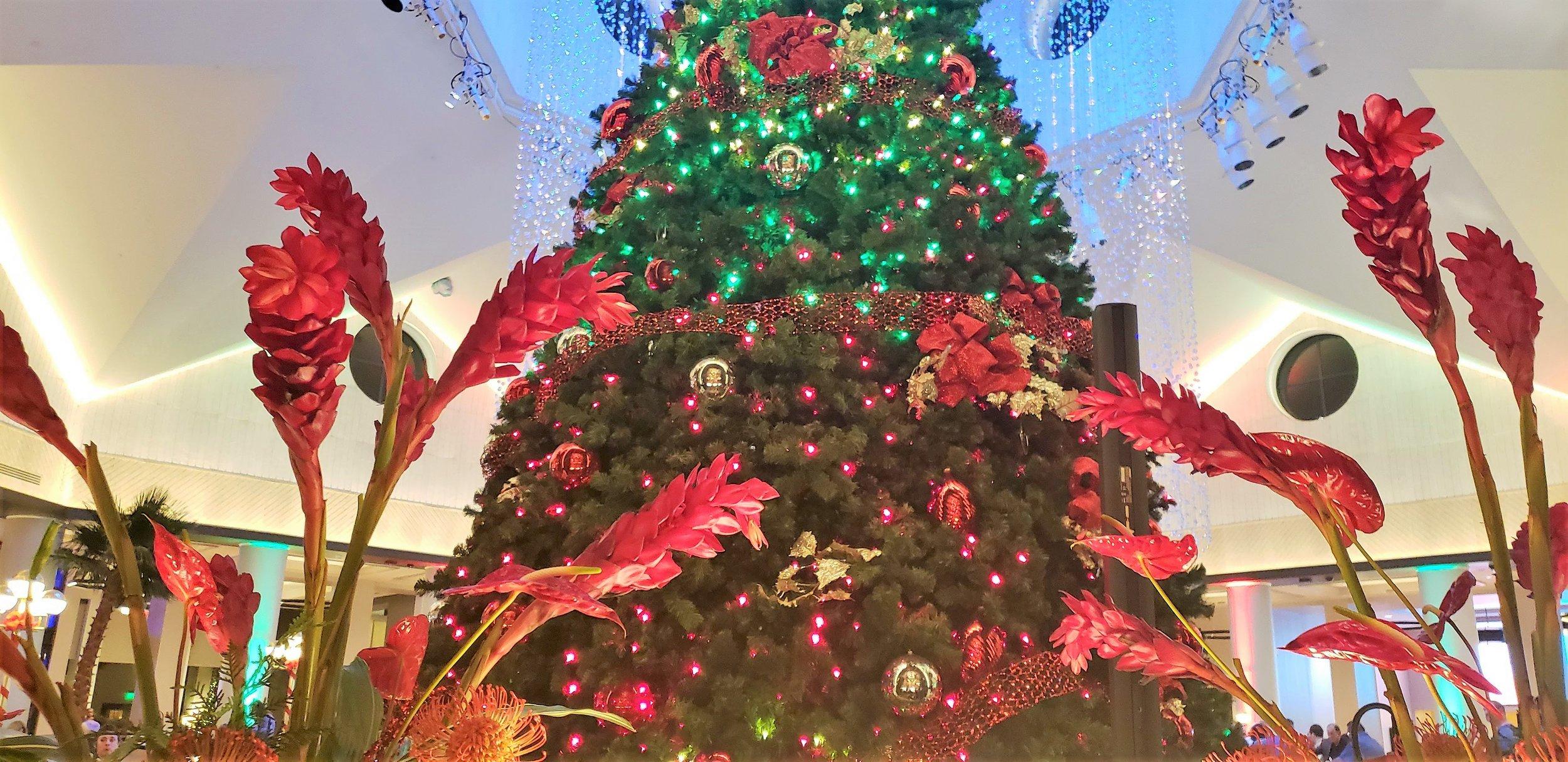 Dolphin Christmas Tree.jpg