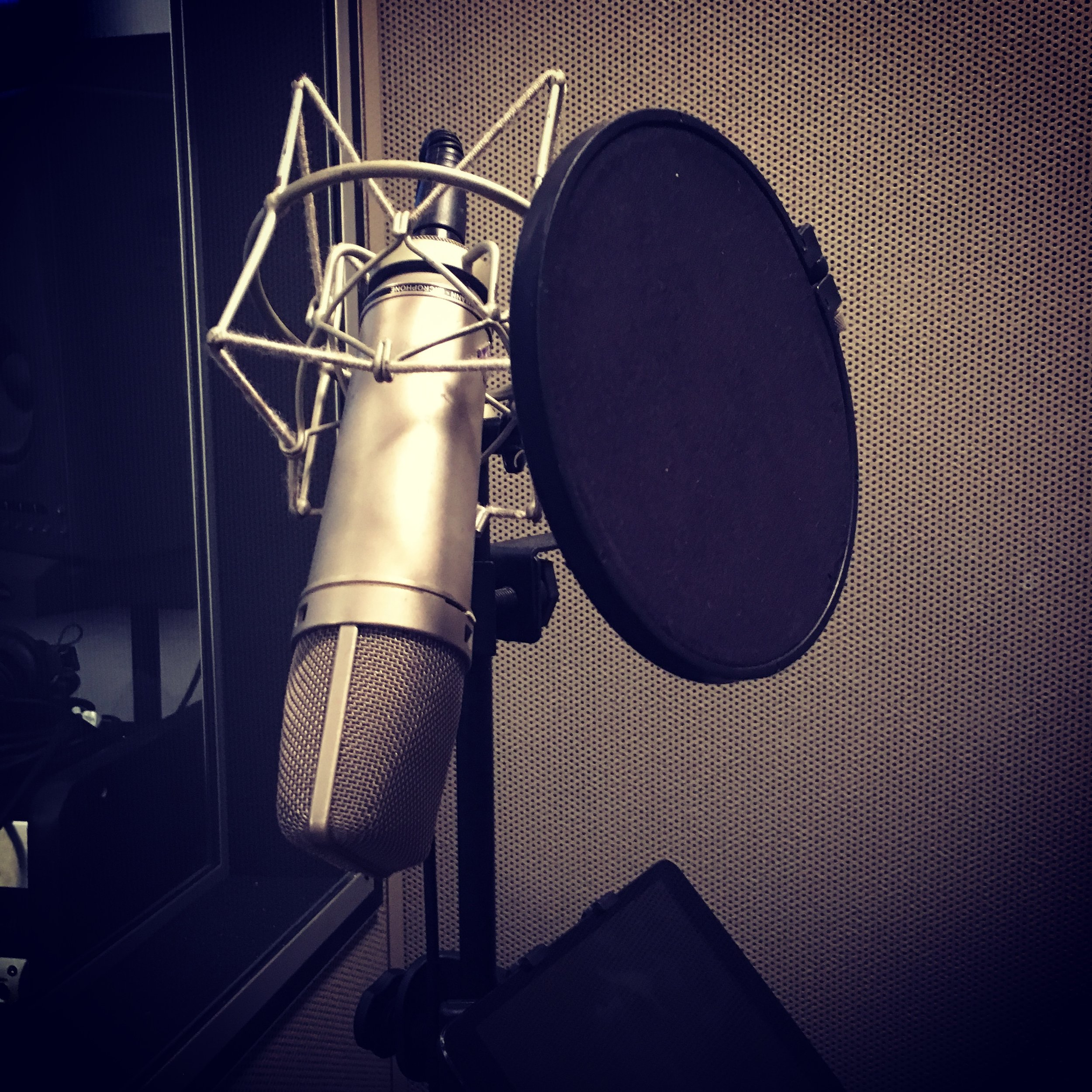 reneveron_voiceover_services