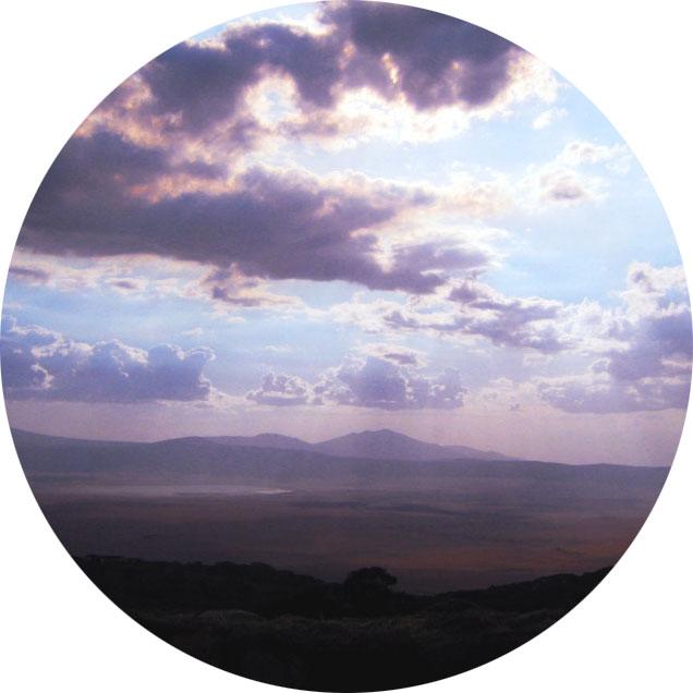 and purple skys, -