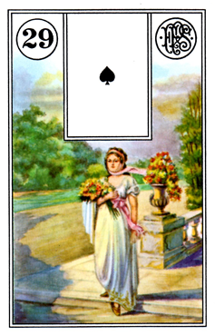 card2.png