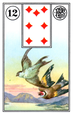 card11.png