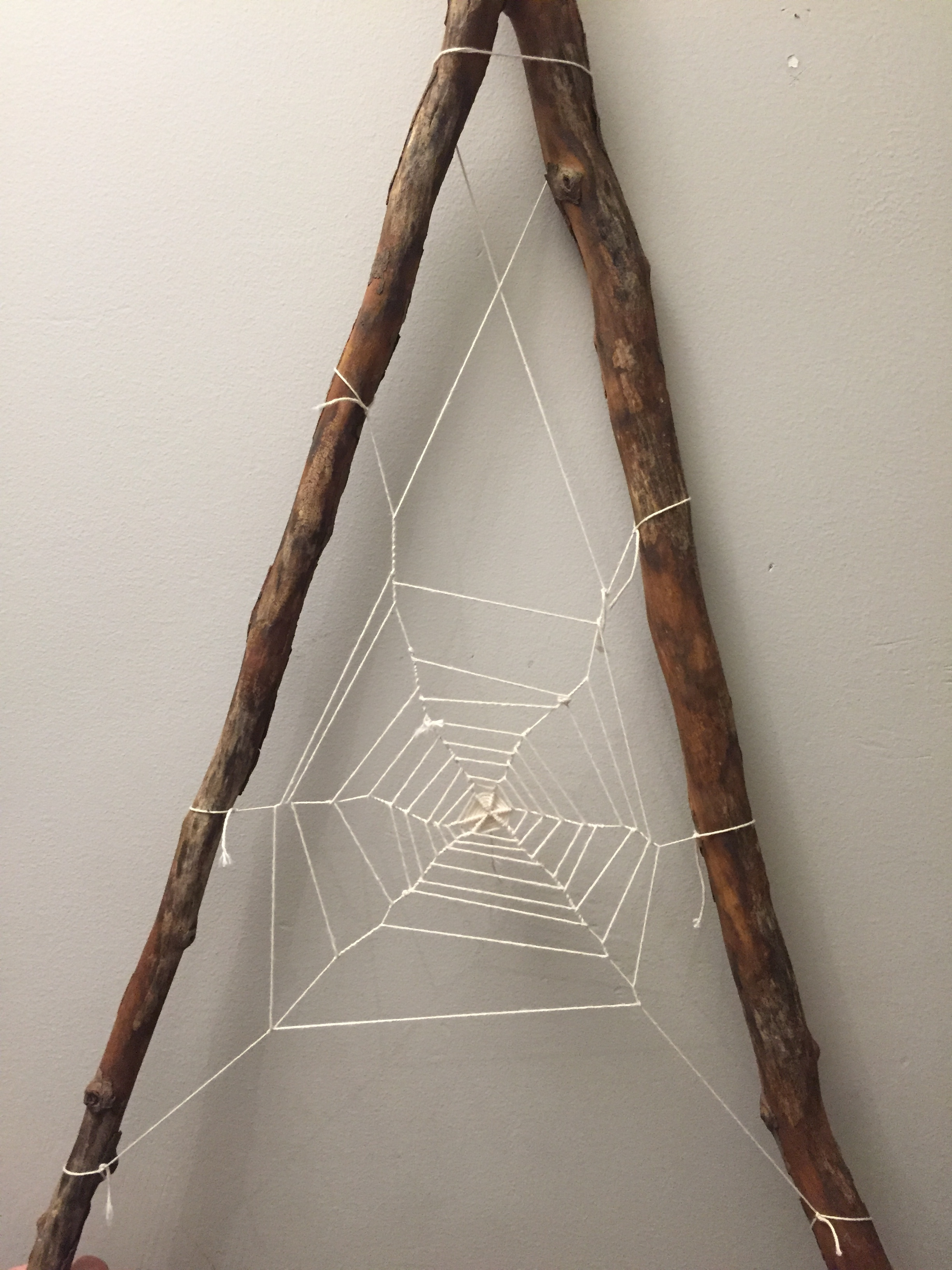 The completed web. Maya Eilam