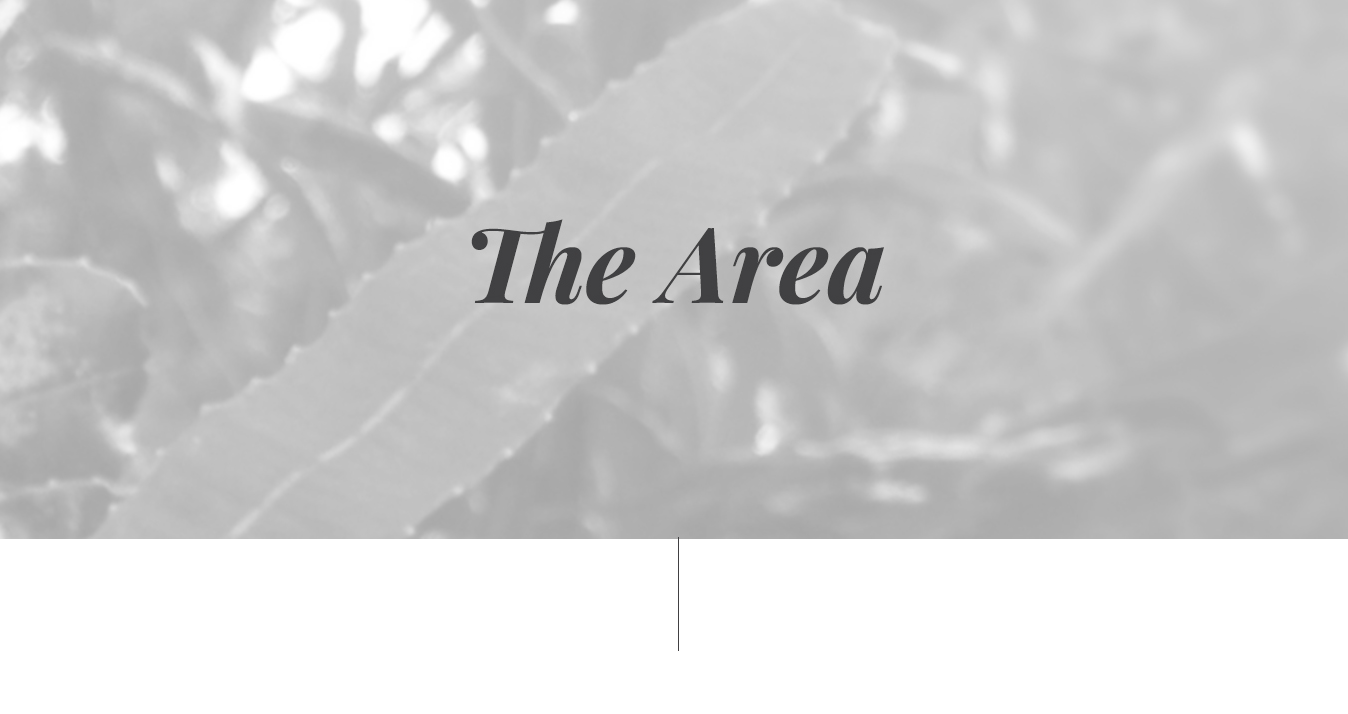 the area.png
