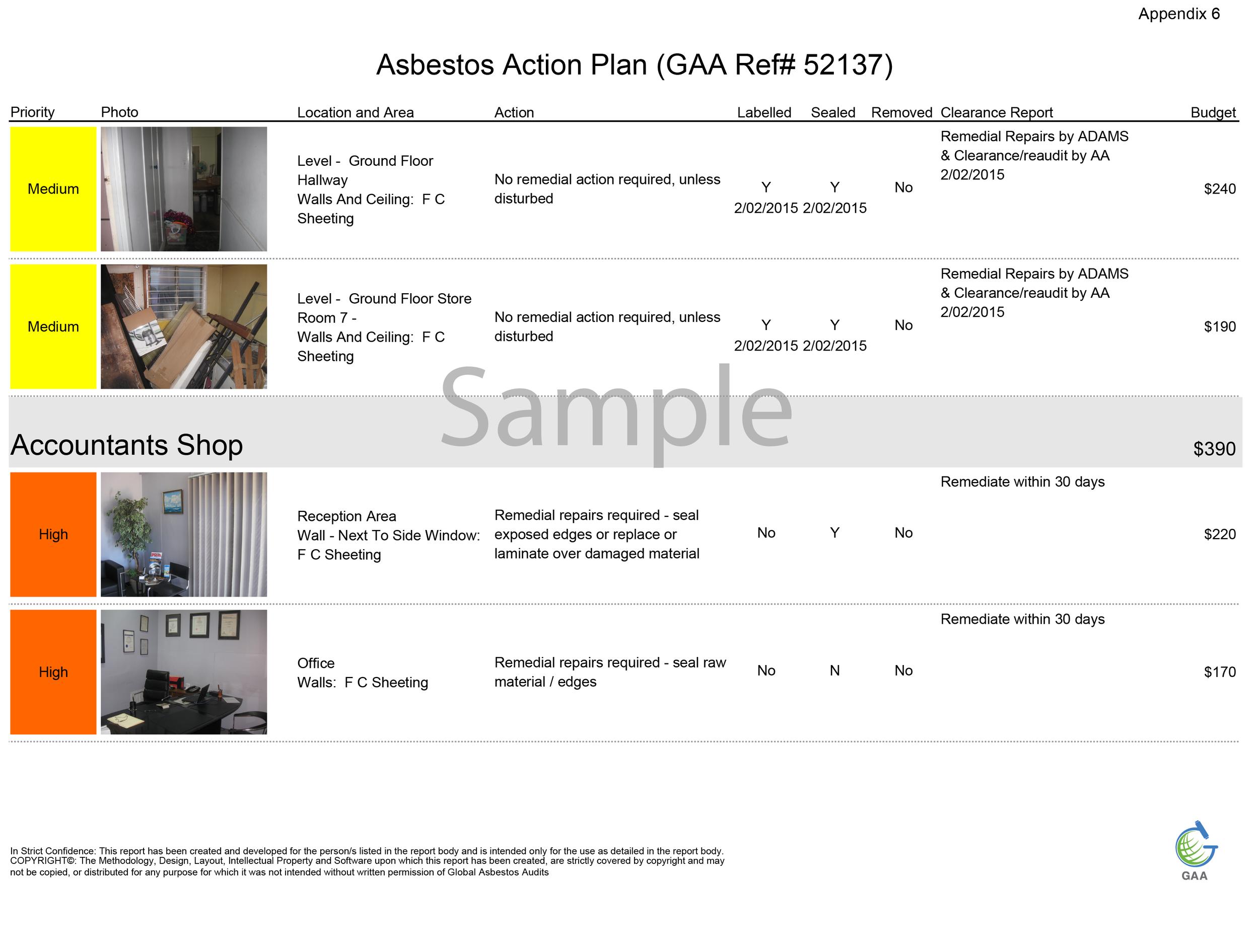 Appendix 6 Action Plan.png