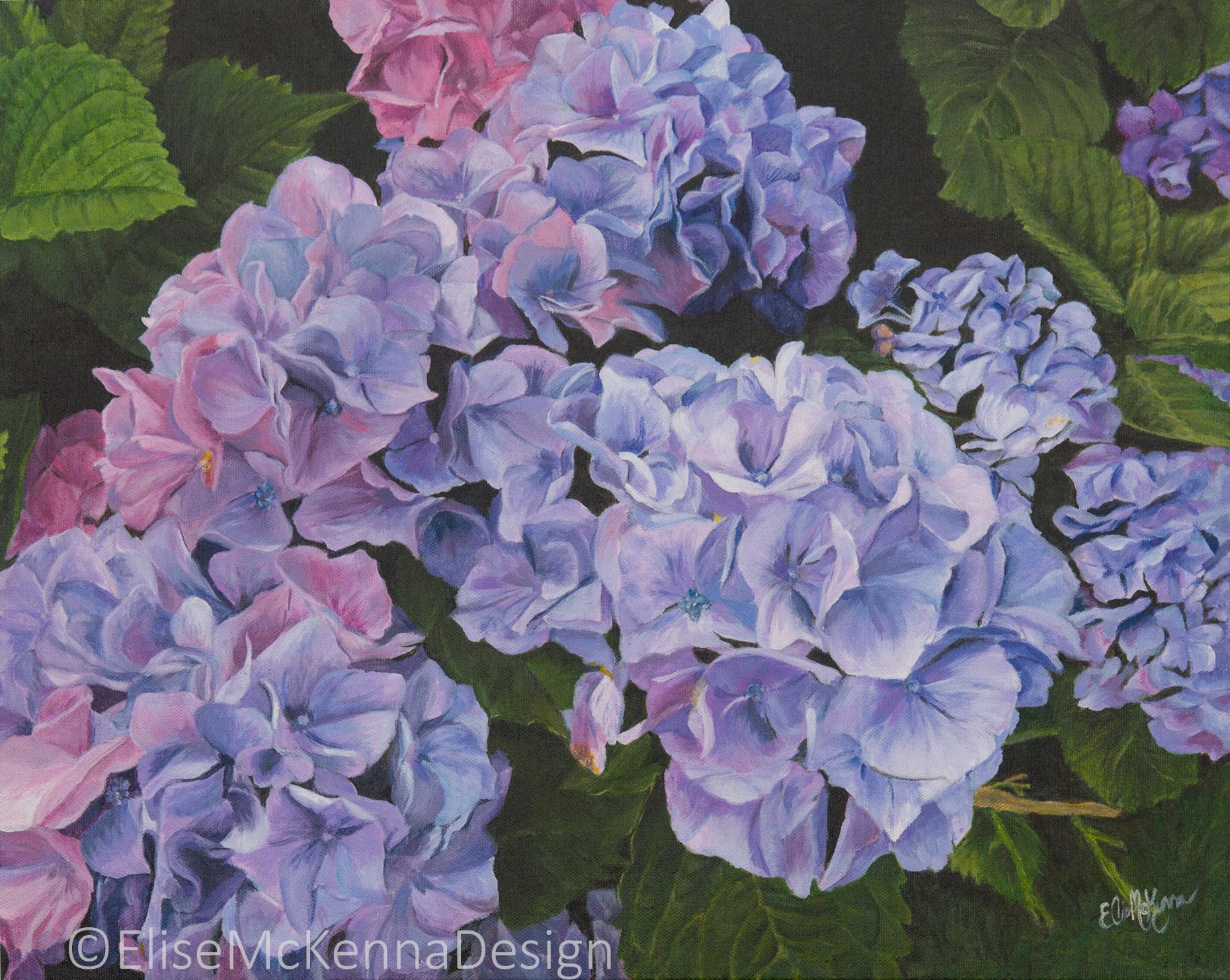 0-Hydrangea_Painting_HiResForWeb.jpg