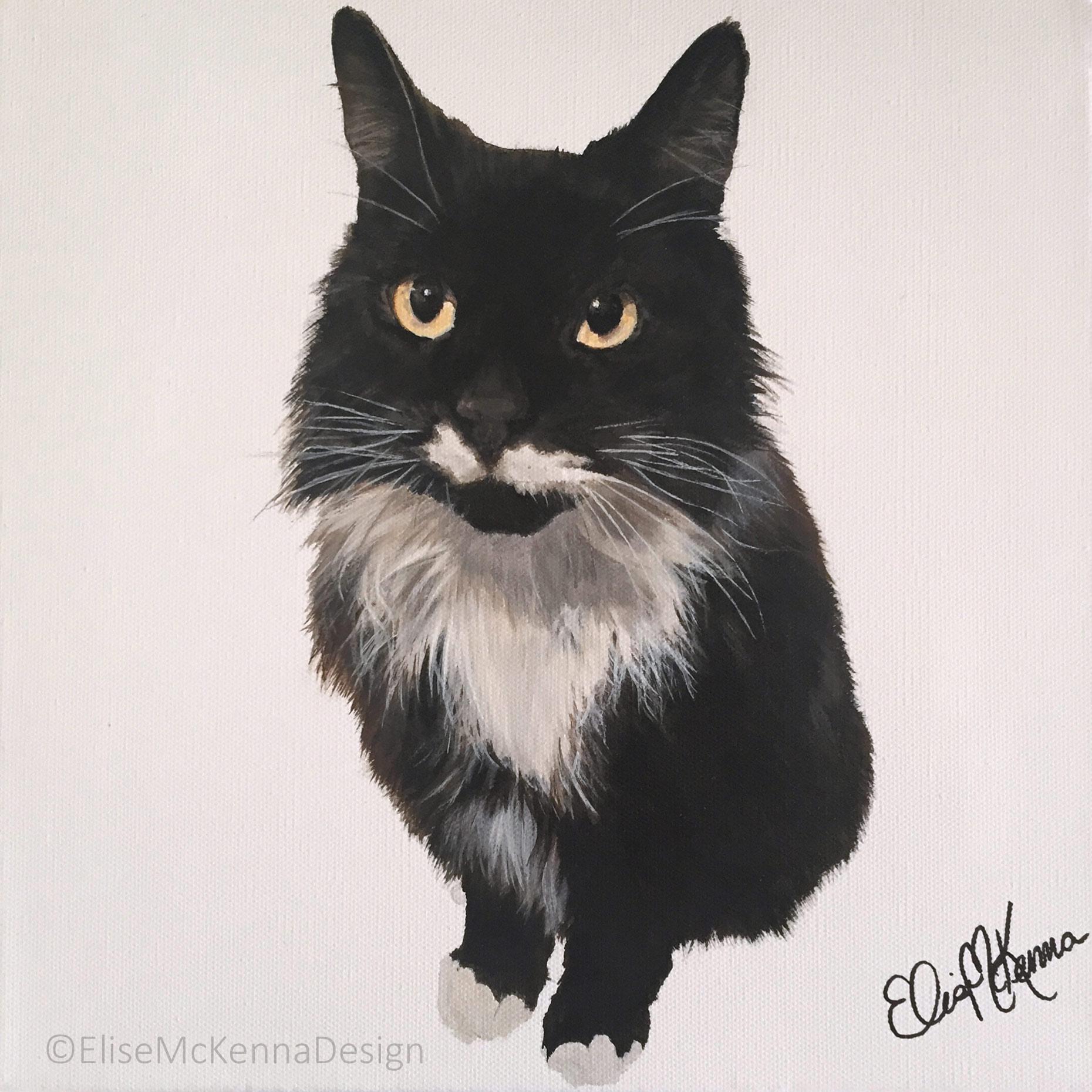 """Grouch; domestic long hair;  acrylic on canvas; 12 x 12 x 1"""""""