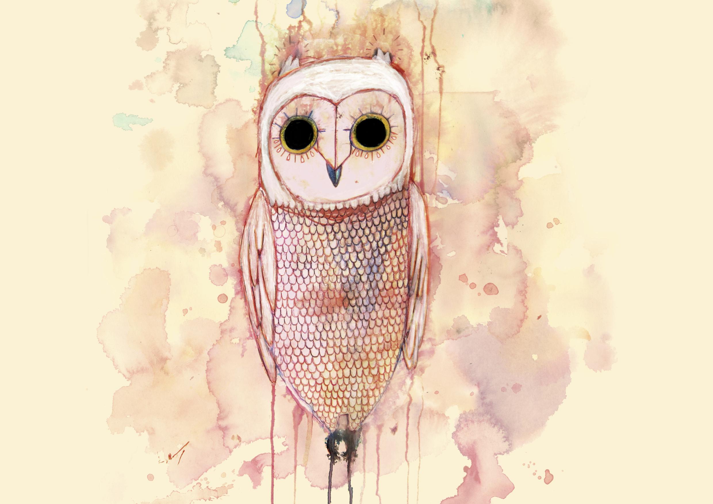 white_owl