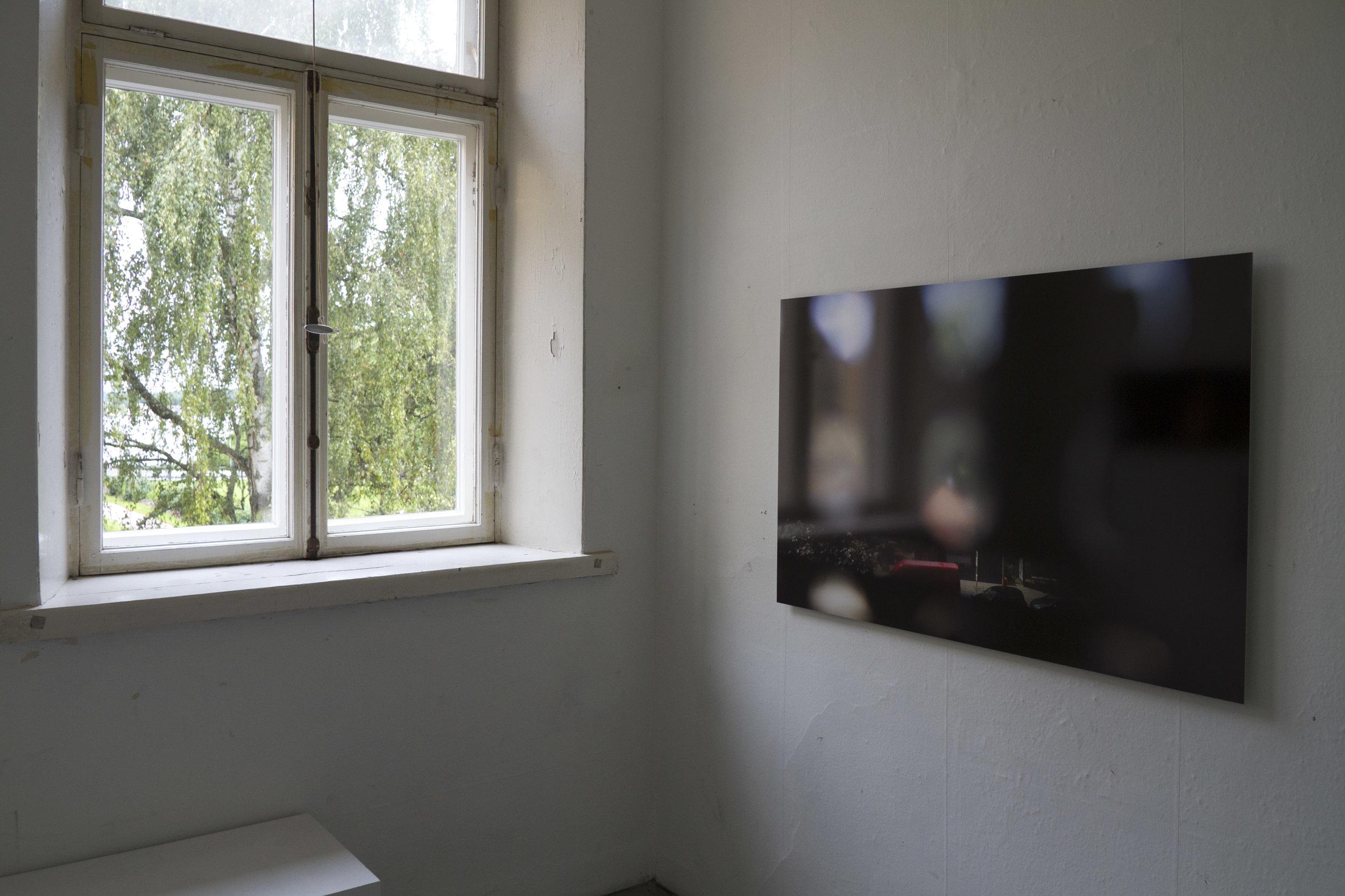 Installation view: Paula Saraste:  Zoloft I  (2013)