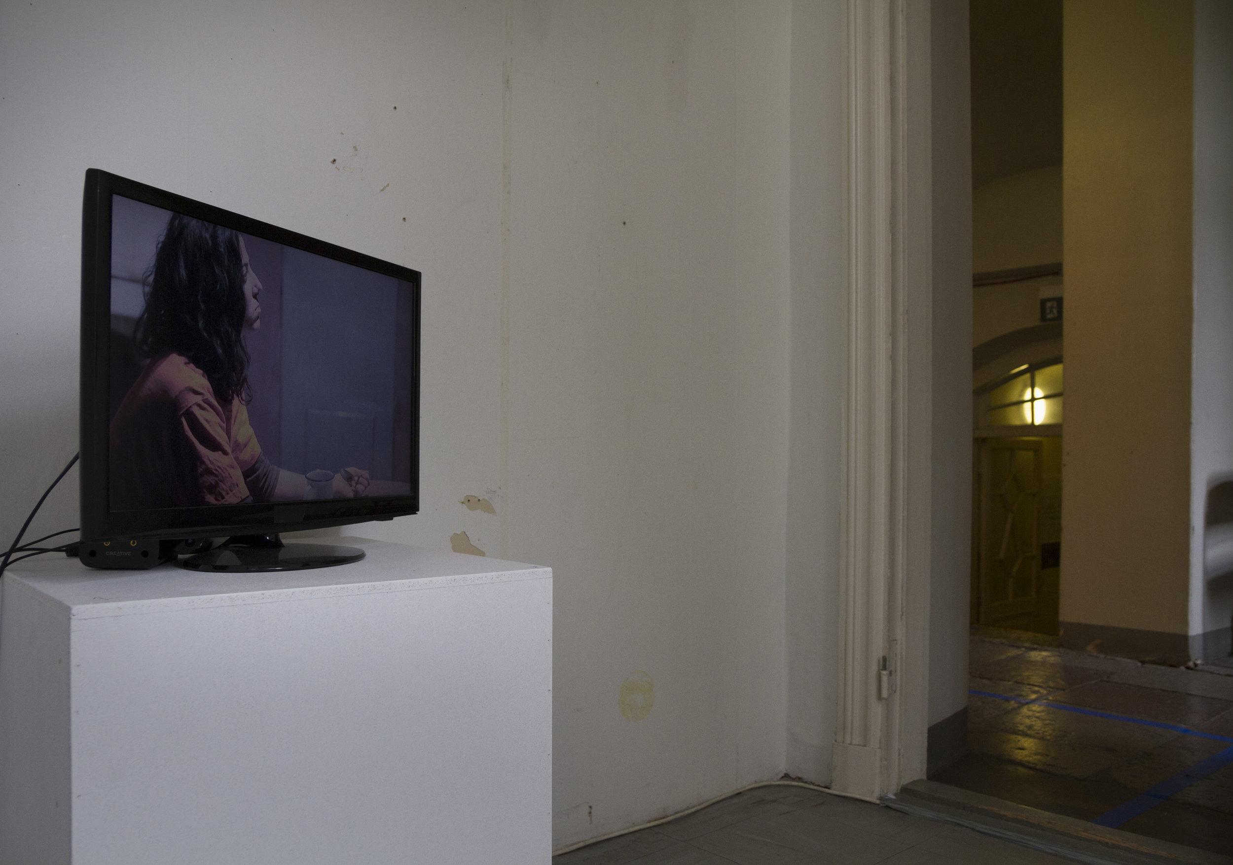 Installation view: Nathalie Tafelmacher-Magnat:  Poem in the Key of Freedom Minor  (2011)
