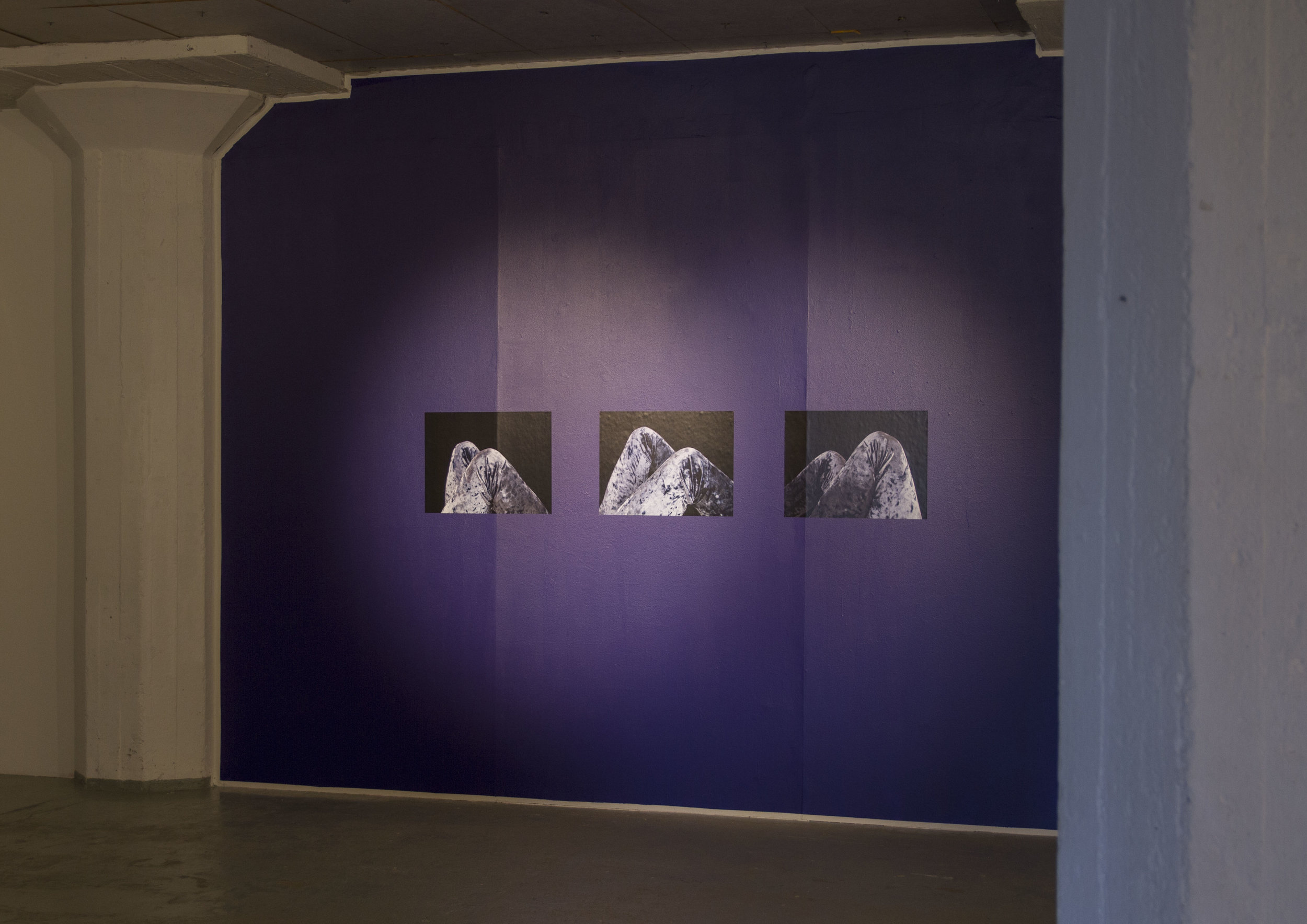 Installation view:  Repeated Sequence (Landscape) , 2017, 42x56cm, pigment prints