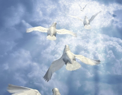 doves-flying-to-light.png