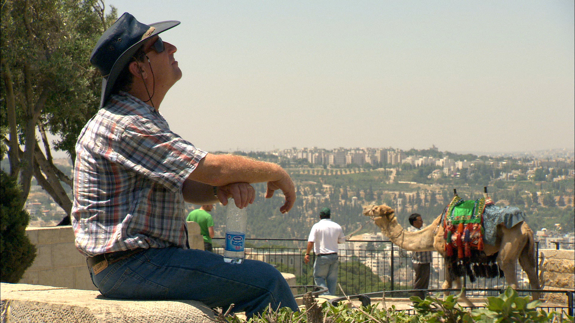 Israel - chameau.jpg