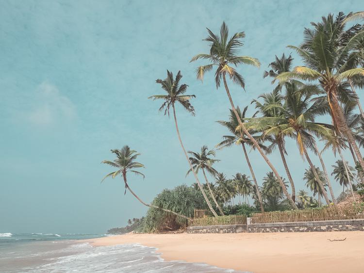 Unawatuna_Beach_Sri_Lanka.jpg
