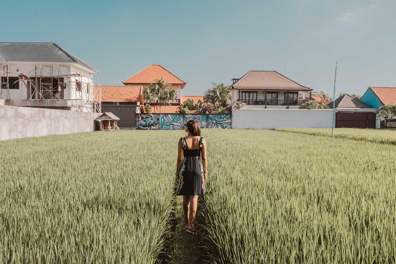 Campos de arroz em Canggu