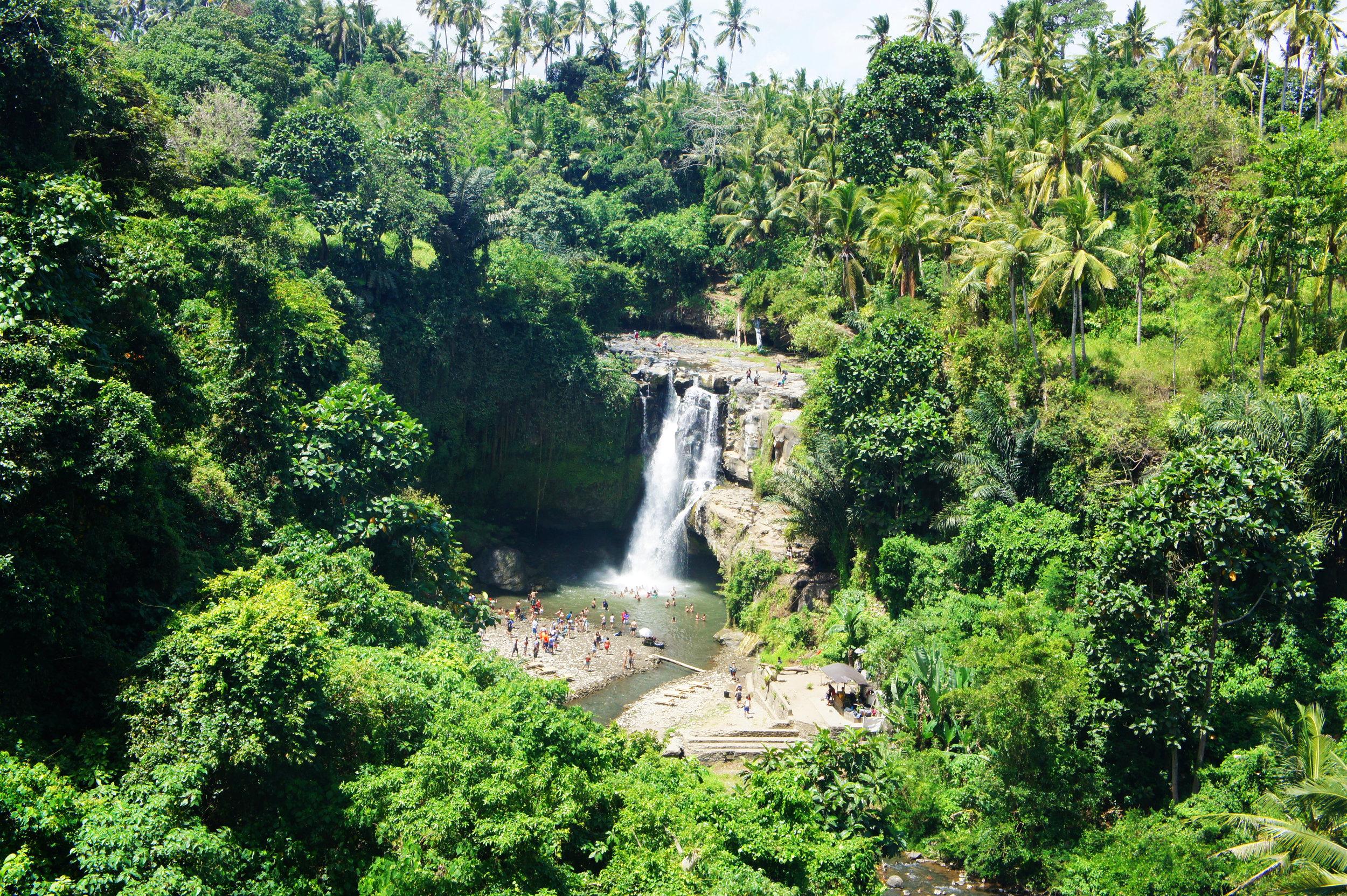 Waterfall-Bali-Elen-Pradera.jpg