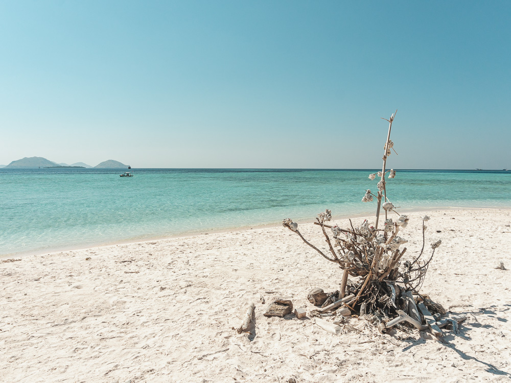 Indonesia-Flores-Taka-Makassar-Komodo-Island-Elen-Pradera-15.jpg
