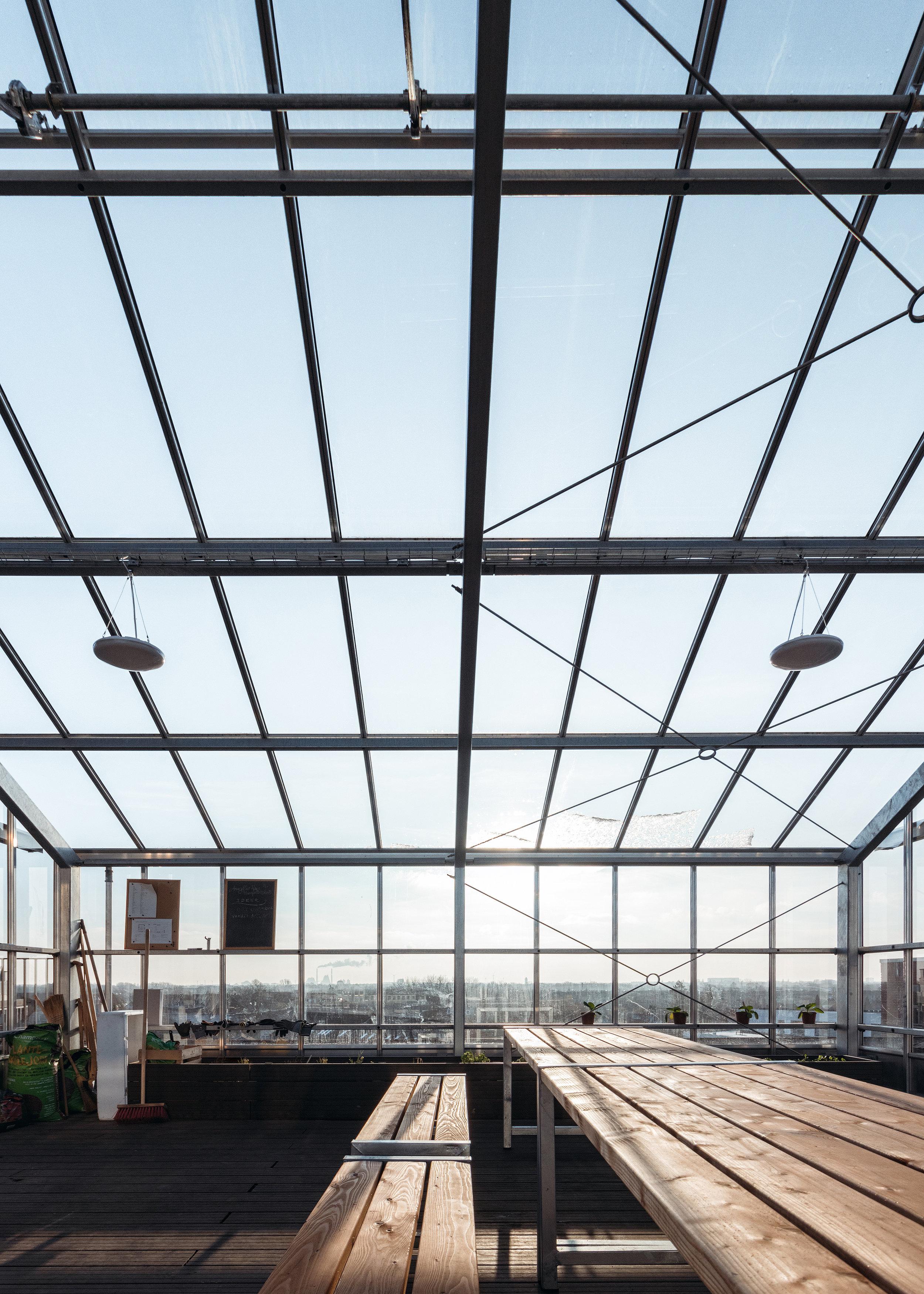 Fælles væksthus på taget