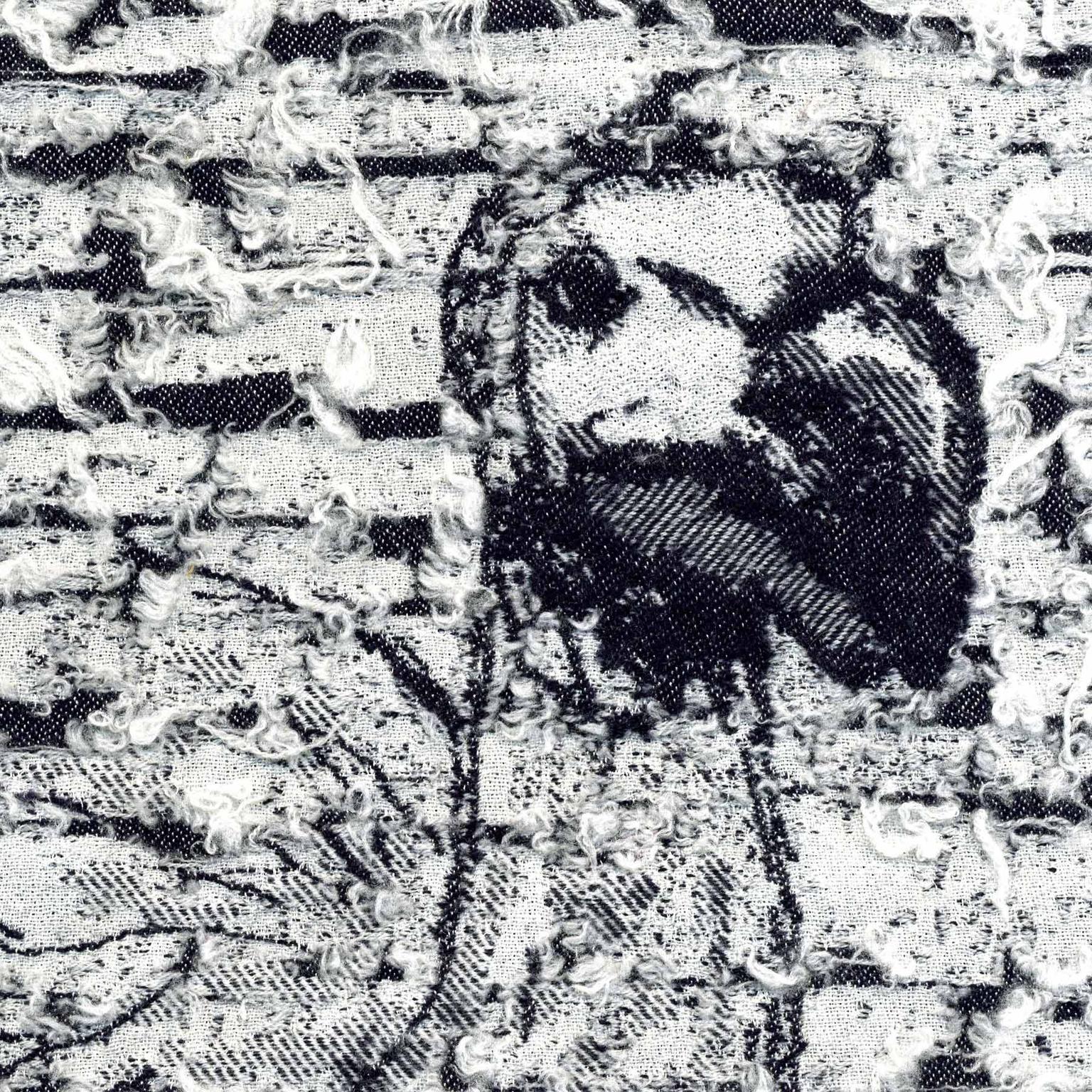 Copy of Copy of Copy of Dodo, Raphus cucullatus