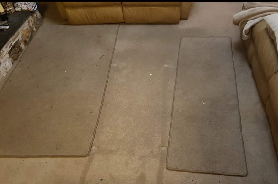 Carpet before professional cleaning
