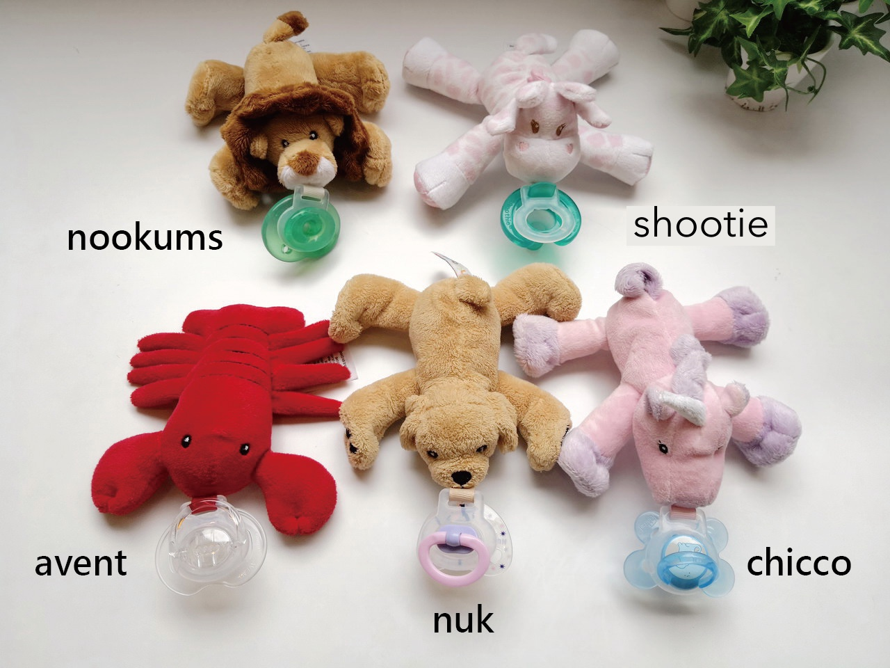 Nookums pacifier holder is compatible with most pacifier brands in market.