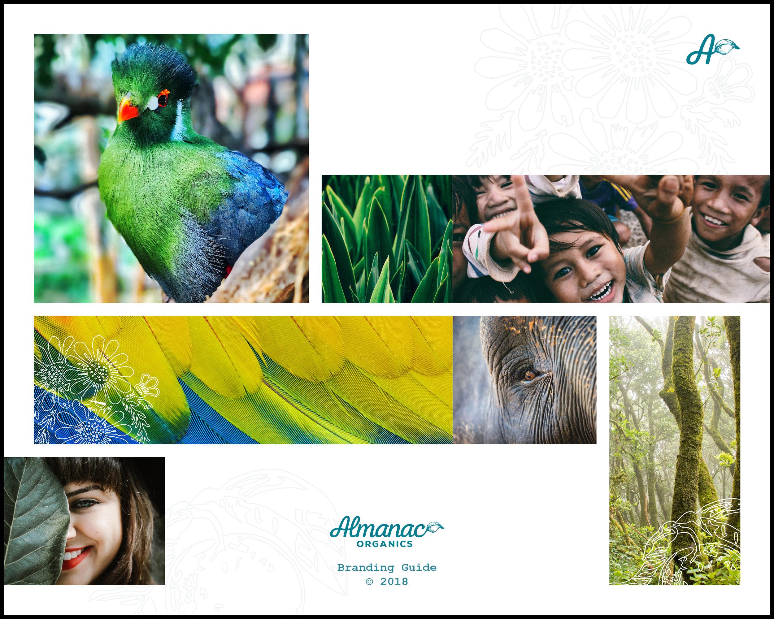 Almanac_Organics_Branding_Guide19.jpg