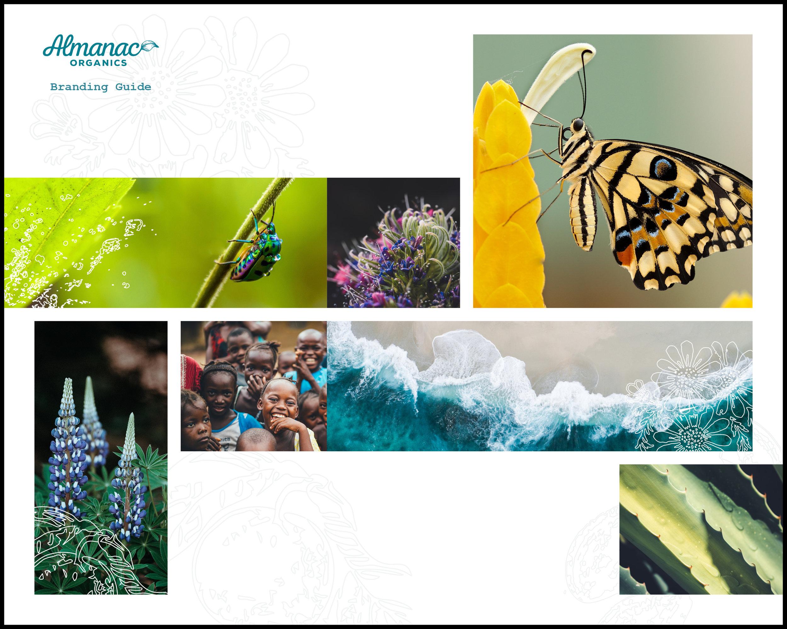 Almanac_Organics_Branding_Guide.jpg