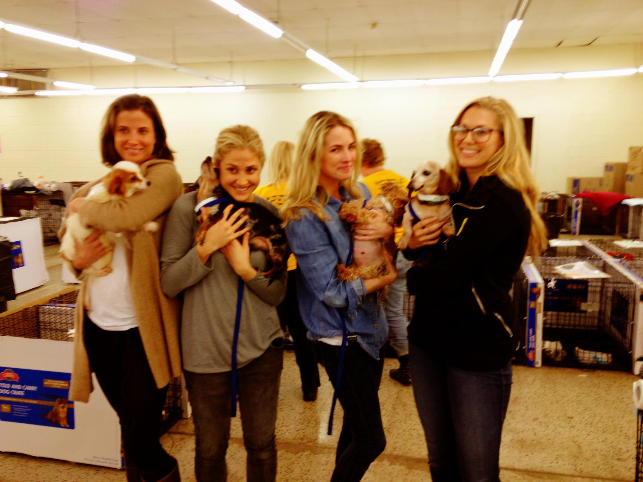 Amanda, Breanna, Lauren Schweibold & Kimberly Ovitz at a puppy mill raid in NC