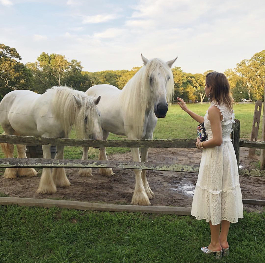 """WHITE SHIRES - TESS AND ISABELLE    In 2015, Mary Lou Kaler of Stable Environment Equine Rehabilitation (S.E.E.R.) rescued four White Shire horses after they were found severely malnourished and abused by their former owner. Pictured above, Isabelle and Tess were moved to local farm land in East Hampton generously donated by    Dune Alpin   , where they could recover from their desperate situation and be given a new lease on life. Over time, the four beauties established a strong presence in the area with locals calling them a """"blessing for the whole town"""" and """"magical, noble beings."""" However, the care and keeping of these horses is no small task with shelter, food and medical needs adding up to thousands a month and no consistent winter housing available.     Our Alliance Member and photographer Lincoln Pilcher curated The White Shire series, a collection of portraits of these gentle giants with the aim of raising awareness and funds to finance a permanent home for them at Dune Alpin by building out the existing barn to keep them warm and safe during the colder months. Inspired by this story, we dedicated our holiday event on December 11th to further spread the White Shire mission. In addition to Lincoln's photography exhibited at the event, we featured a sustainable, cruelty-free selection of retail brands curated by ethical fashion site    WWW.MAISON-DE-MODE.COM   . All proceeds go to the White Shires."""