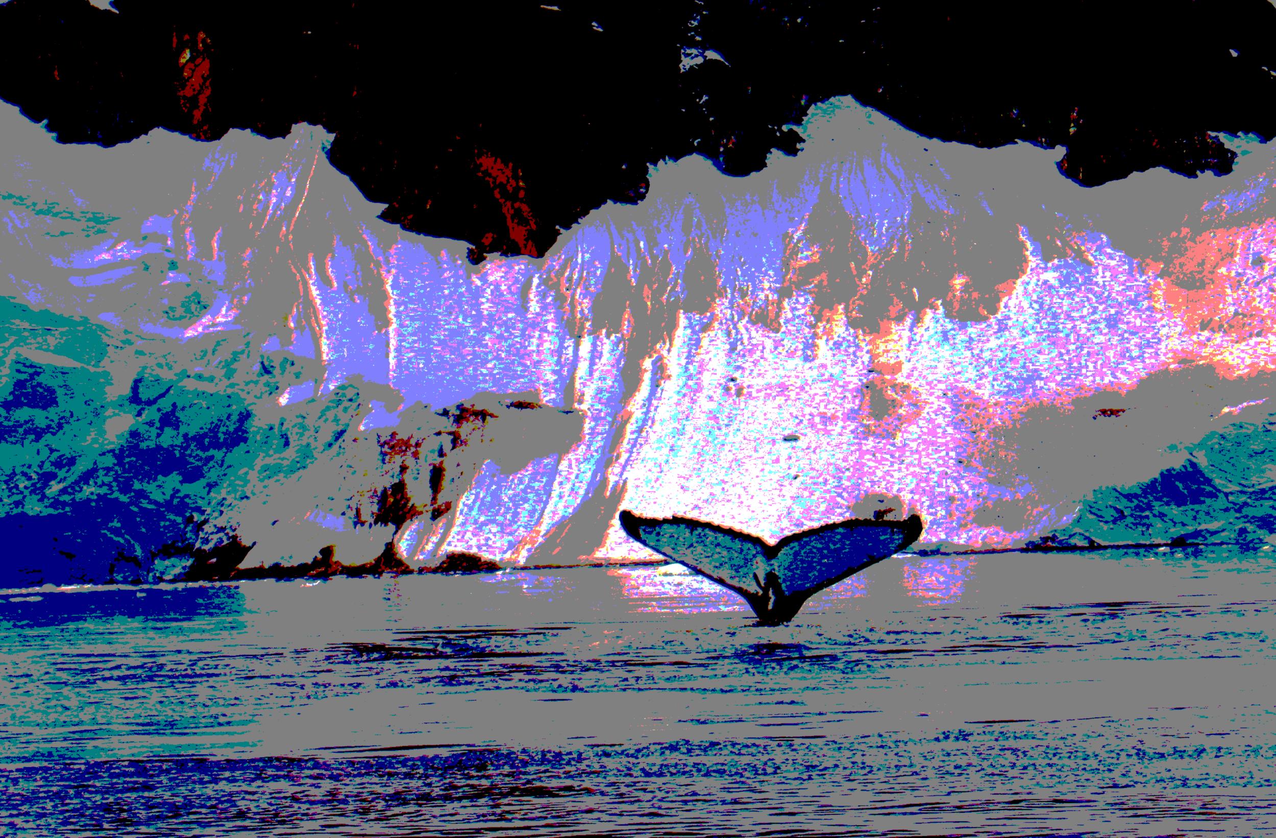 Polar Region III
