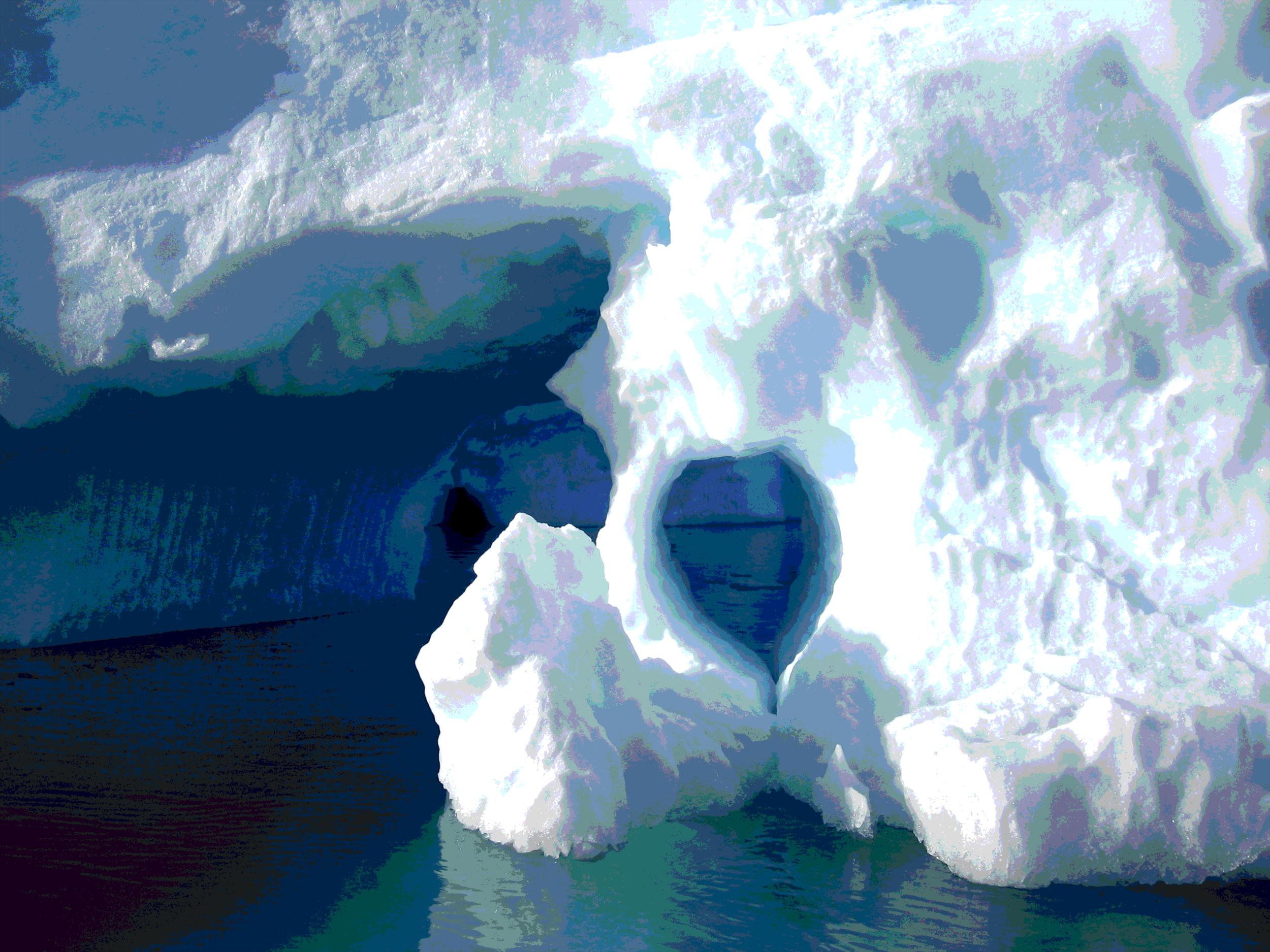 Polar Region X
