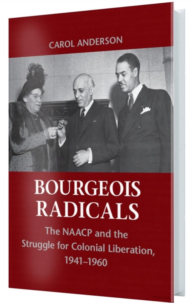 Bourgeois Radicals_3d.jpg