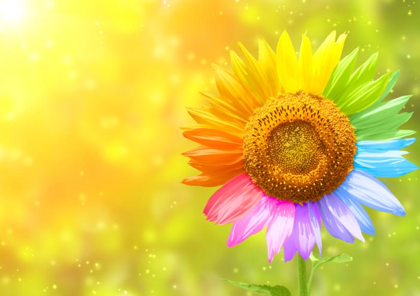 creative flower.jpg