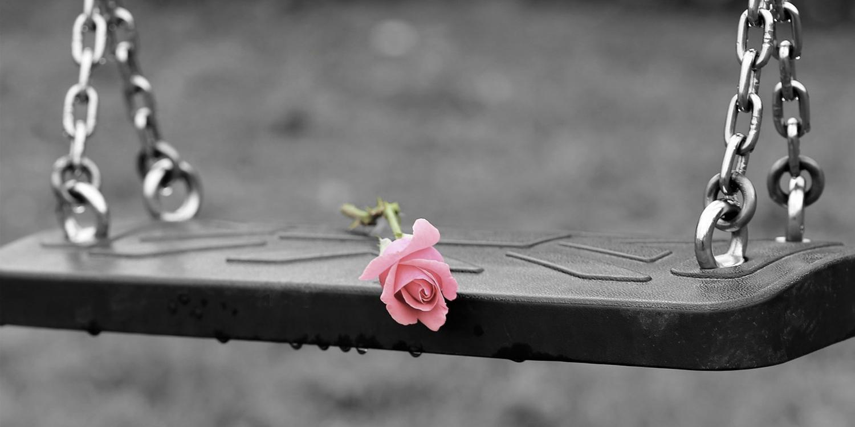 pink-rose-on-empty-swing-3656894_1280.jpg