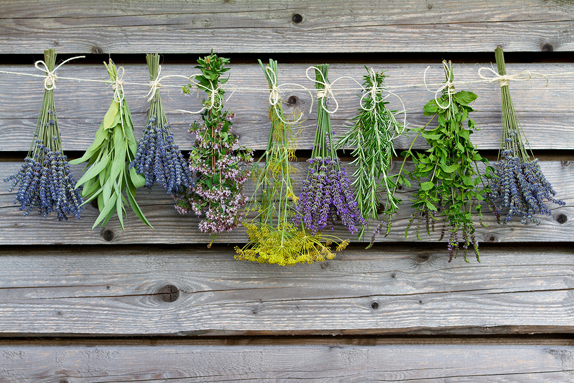 We try to source local and seasonal herbs for our clients whenever possible to achieve quality and flavor.