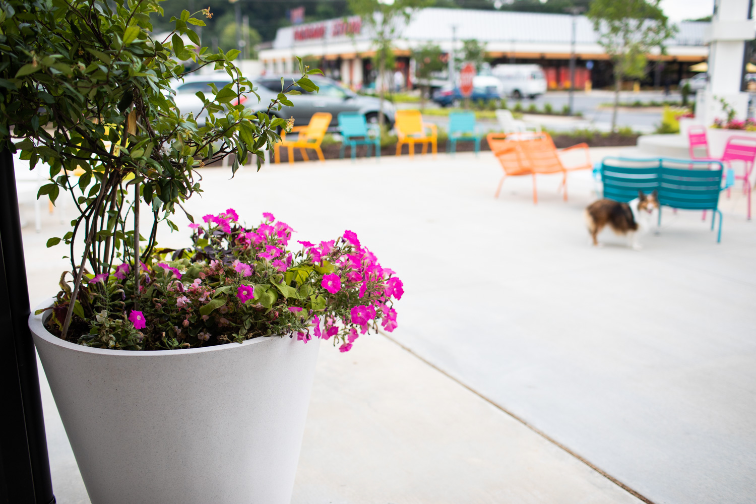 Vibrant colors are the theme at Spiller Park Coffee.