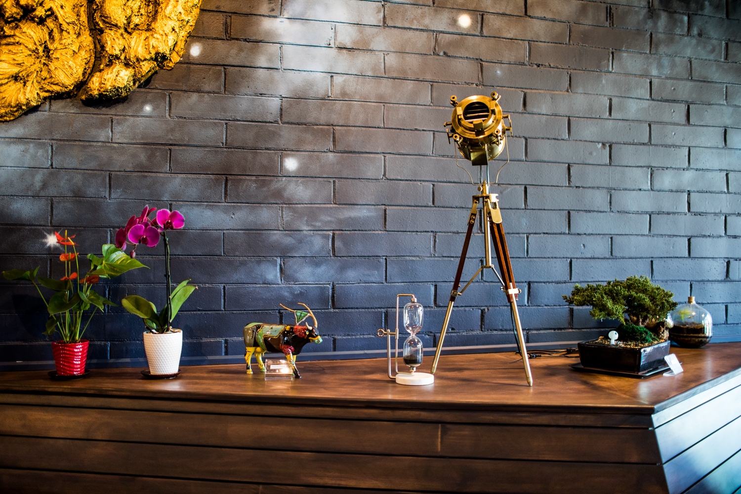 Design elements at Alchemist Trading Co. How beautiful is that golden telescope?