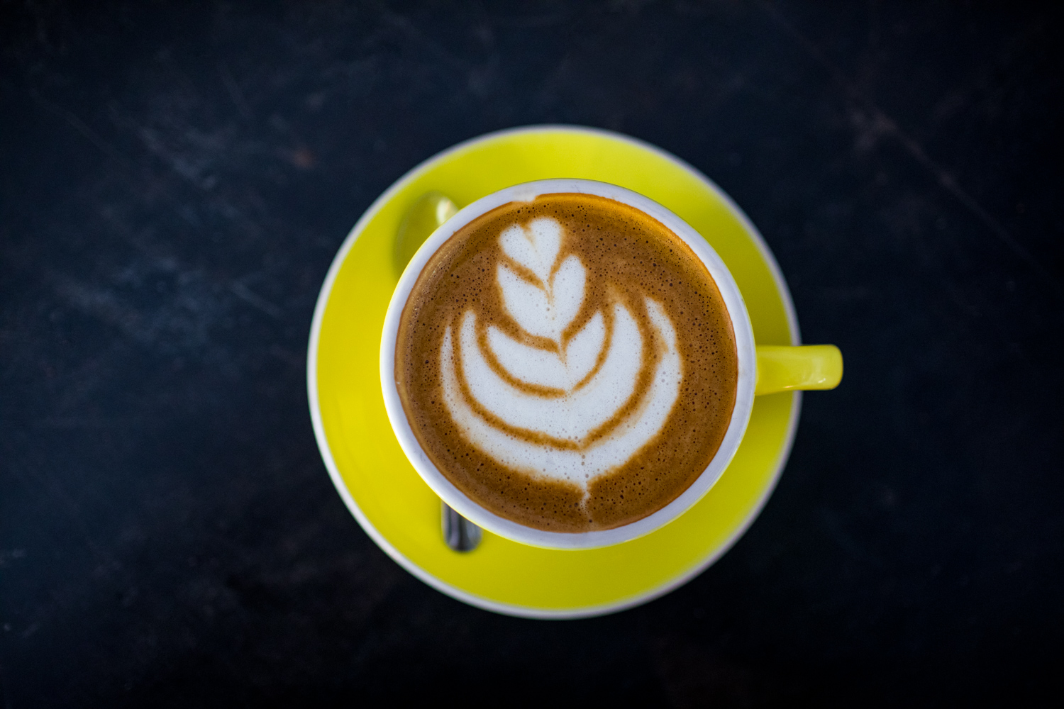 Oat milk cappuccino at Banjo Coffee. See this image  on Instagram .