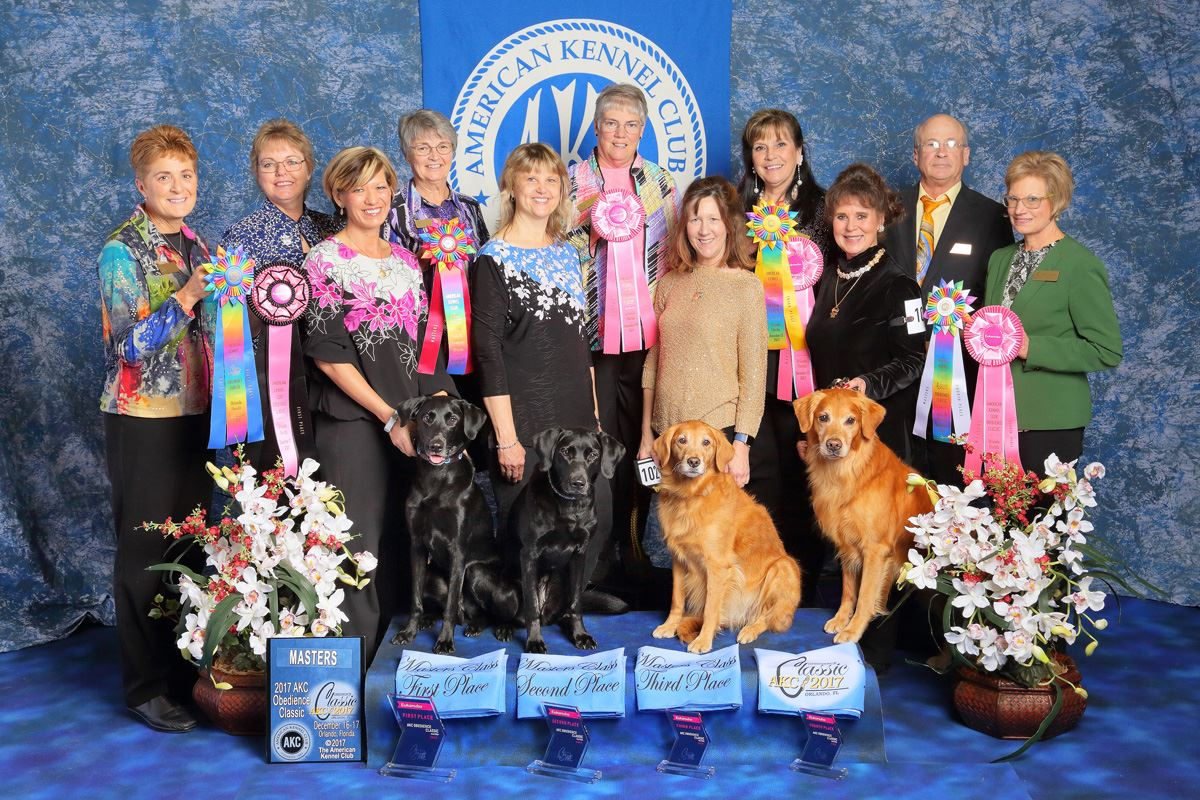 Masters Class 1st: Petra Ford & OTCH Rhumbline's All Or Nothing UDX2 OM4 (Labrador Retriever - Zeal). 2nd: Linda Brennan & OTCH Rhumbline's Once In A Blue Moon UDX5 OM8 BN GN VER RE (Labrador Retriever - Heart). 3rd: Jeanne Thomas & OTCH Tanbark's Honey Of A Cheesehead UDX26 OGM GN VER RE (Golden Retriever - Packer). 4th: Lorie Jolly & OTCH The Rosehill Connection UDX6 OGM MH MX MXJ CGC TKN (Golden Retriever - Bridge).
