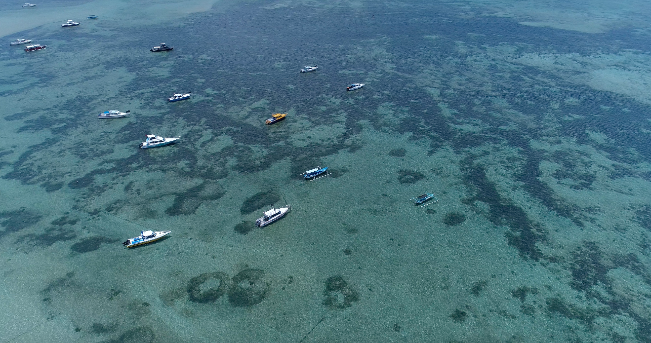 Bali Drone.png