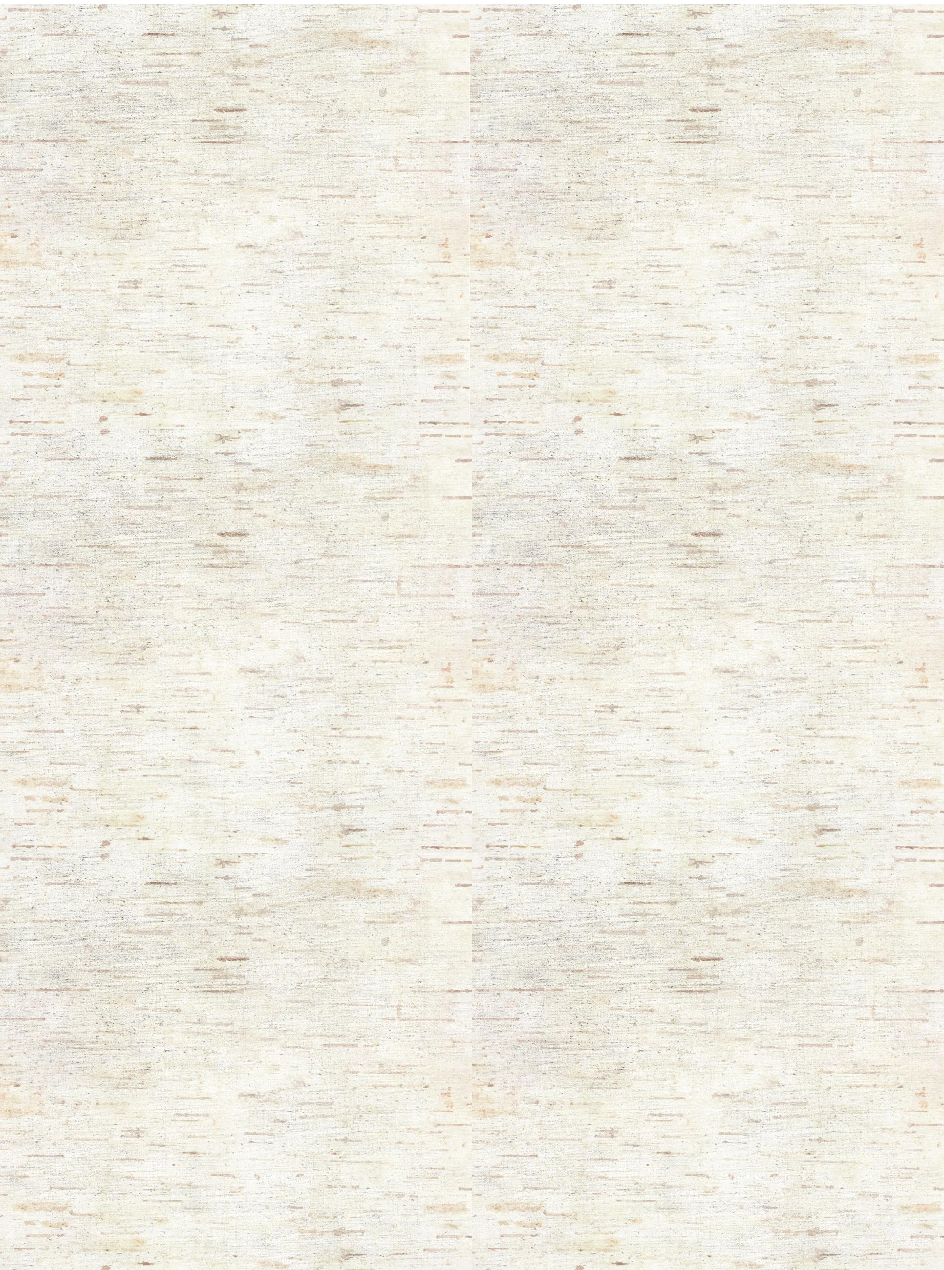 Background #1 (Birch Tree)